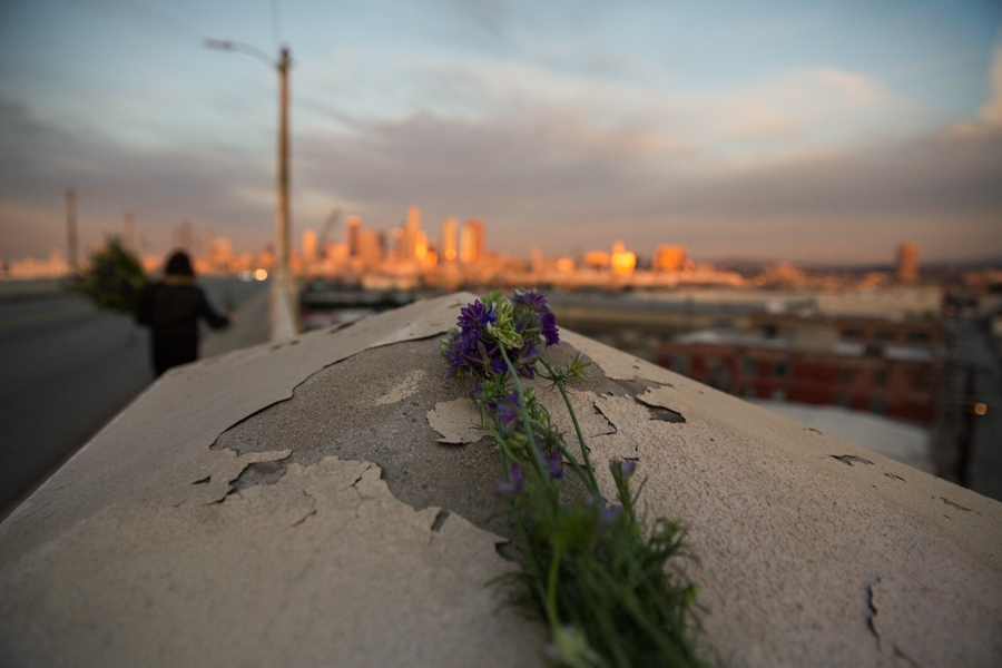 http://heathermobrien.com/files/gimgs/th-62_62_where-larkspur-once-grew-freely-a-funeral-for-the-6th-street-viaduct-4.jpg