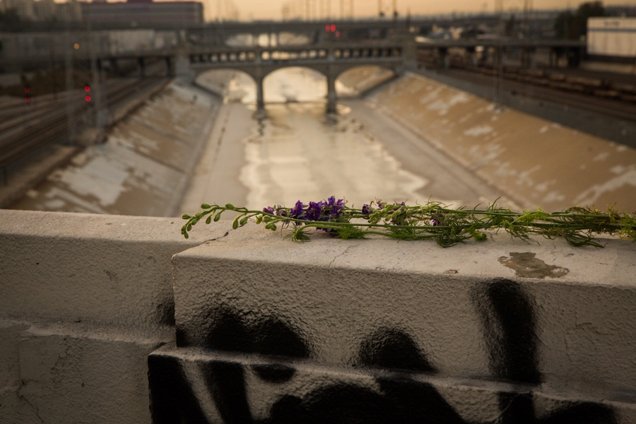 http://heathermobrien.com/files/gimgs/th-62_62_where-larkspur-once-grew-freely-a-funeral-for-the-6th-street-viaduct-7.jpg