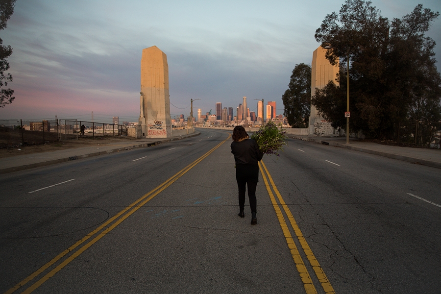 http://heathermobrien.com/files/gimgs/th-62_62_where-larkspur-once-grew-freely-a-funeral-for-the-6th-street-viaduct.jpg